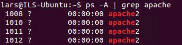 Läuft Apache Webserver?