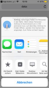 internetlink-auf-homescreen-iphone-05