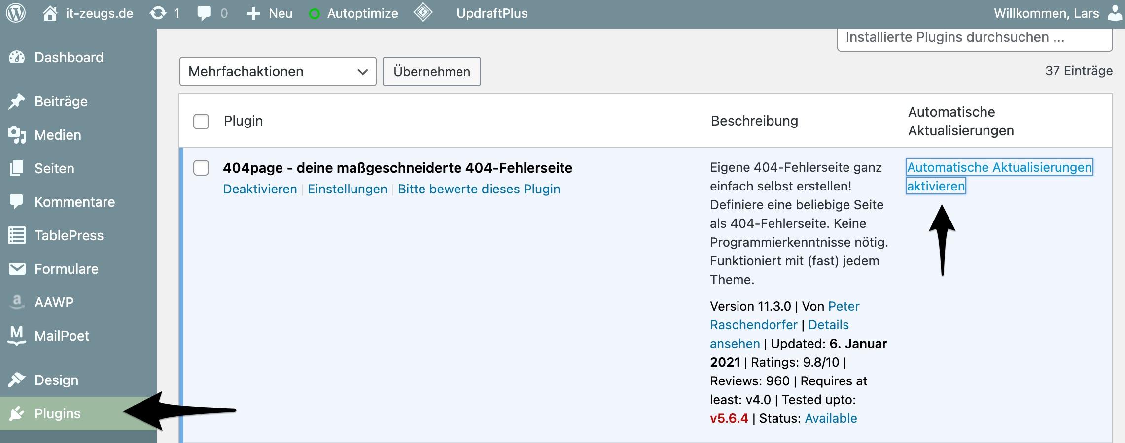 wordpress-plugins-automatische-aktualisierung